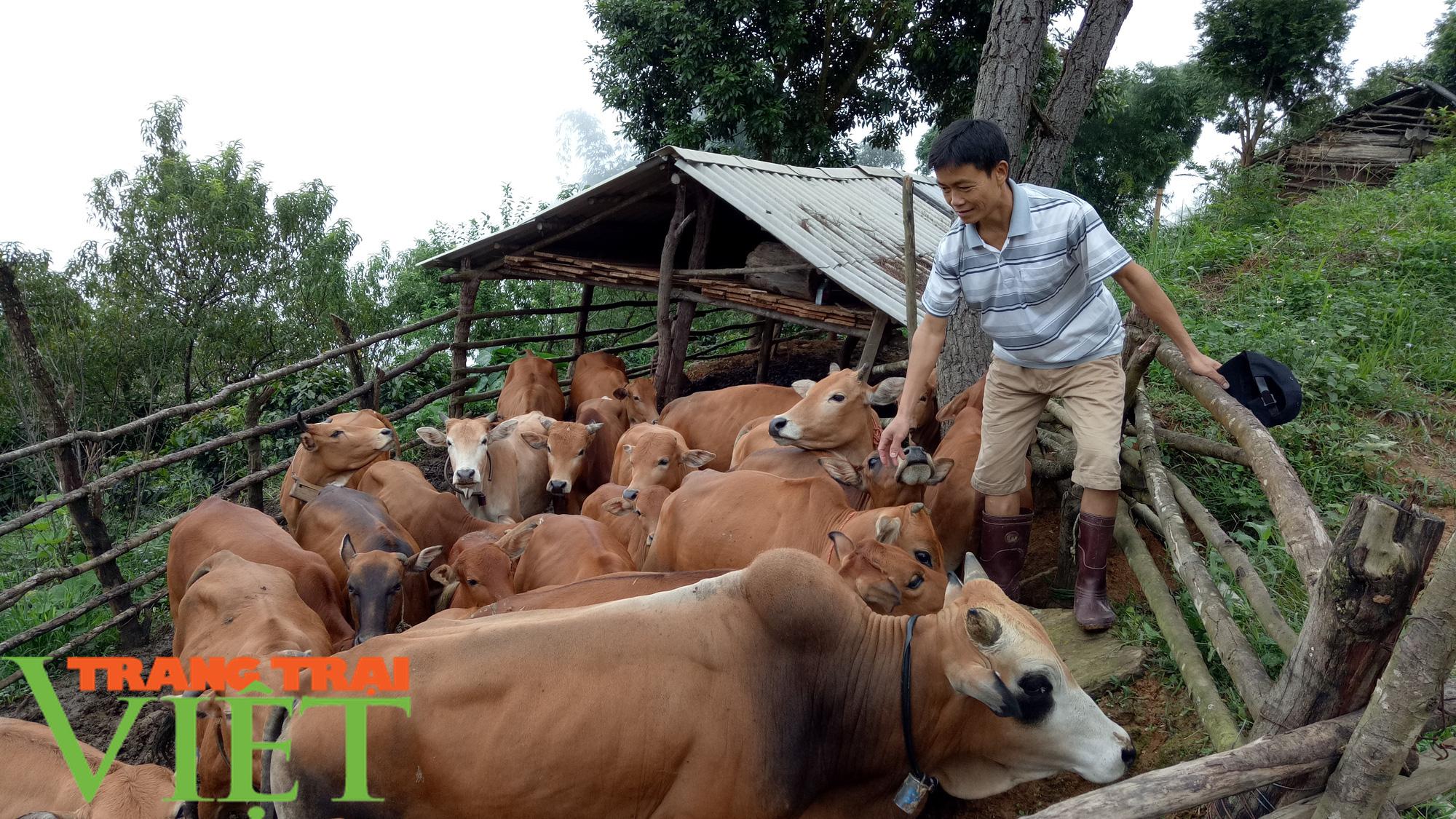 Nông dân Thuận Châu thi đua sản xuất, kinh doanh giỏi - Ảnh 1.