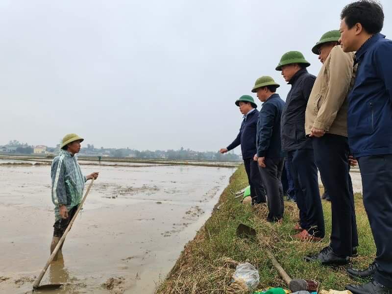 Tập trung khắc phục khó khăn, khôi phục sản xuất nông nghiệp sau thiên tai tại Hà Tĩnh và Quảng Bình - Ảnh 6.