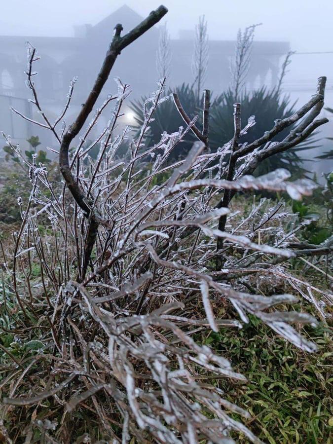 Nhiệt độ giảm sâu, băng giá phủ trắng Mẫu Sơn  - Ảnh 2.