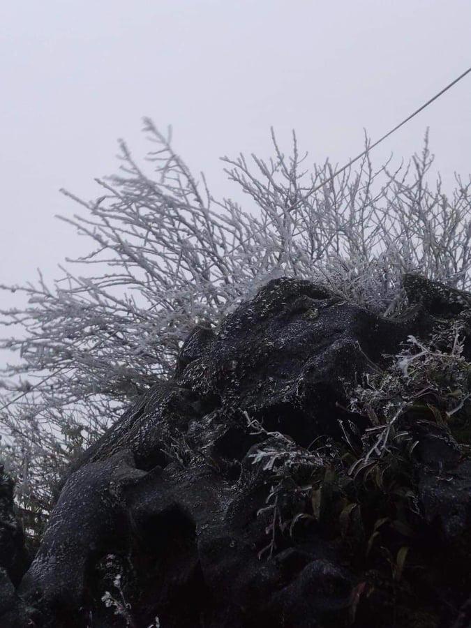 Nhiệt độ giảm sâu, băng giá phủ trắng Mẫu Sơn  - Ảnh 6.