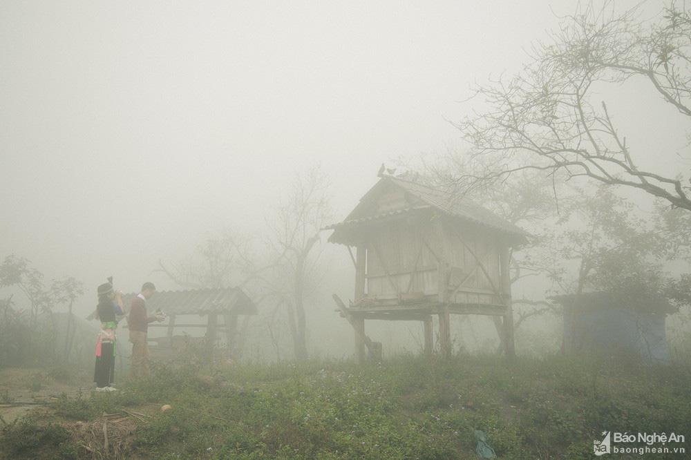Thơm 'điếc mũi' thịt chuột rừng nơi Cổng trời Mường Lống tỉnh Nghệ An - Ảnh 1.