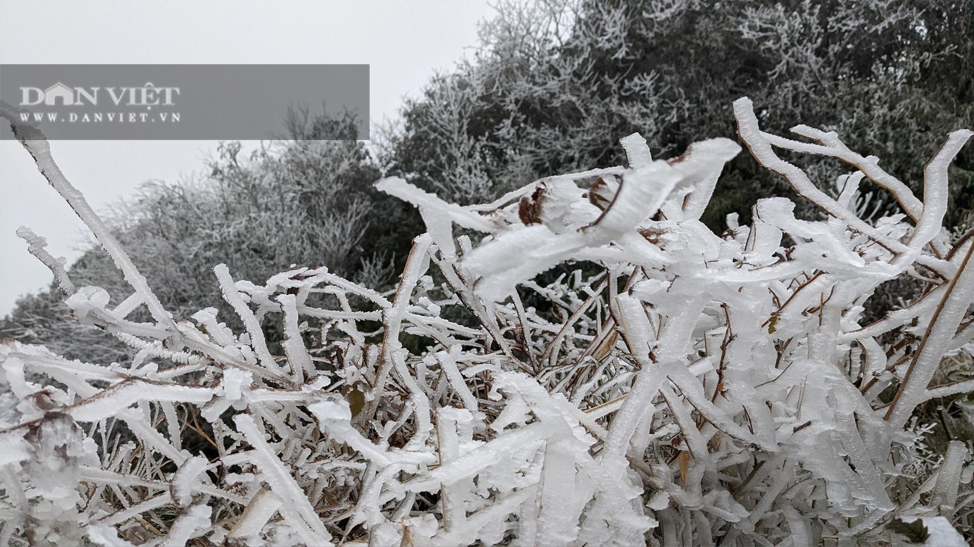 """""""Nóc nhà"""" phía Tây của tỉnh Cao Bằng biến thành thiên đường băng tuyết - Ảnh 6."""