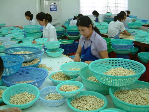 Mỹ, Trung Quốc tới tấp mua, xuất khẩu loại nông sản này tăng tới 78% - Ảnh 1.