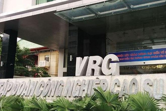 Tập đoàn Cao Su Việt Nam cho mượn đất làm nhà ở để bị lấn, chiếm chưa thu hồi được - Ảnh 1.