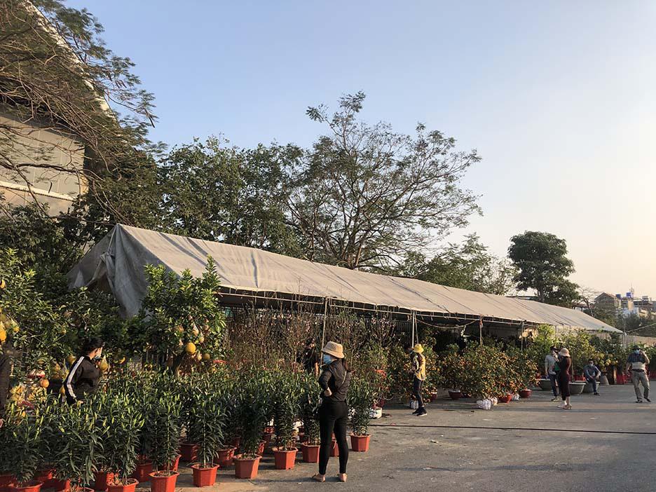 """Tụ điểm dịch vụ vui chơi, công viên đóng cửa: Người dân Quảng Ninh đón Tết """"độc - lạ"""" chưa từng có - Ảnh 3."""