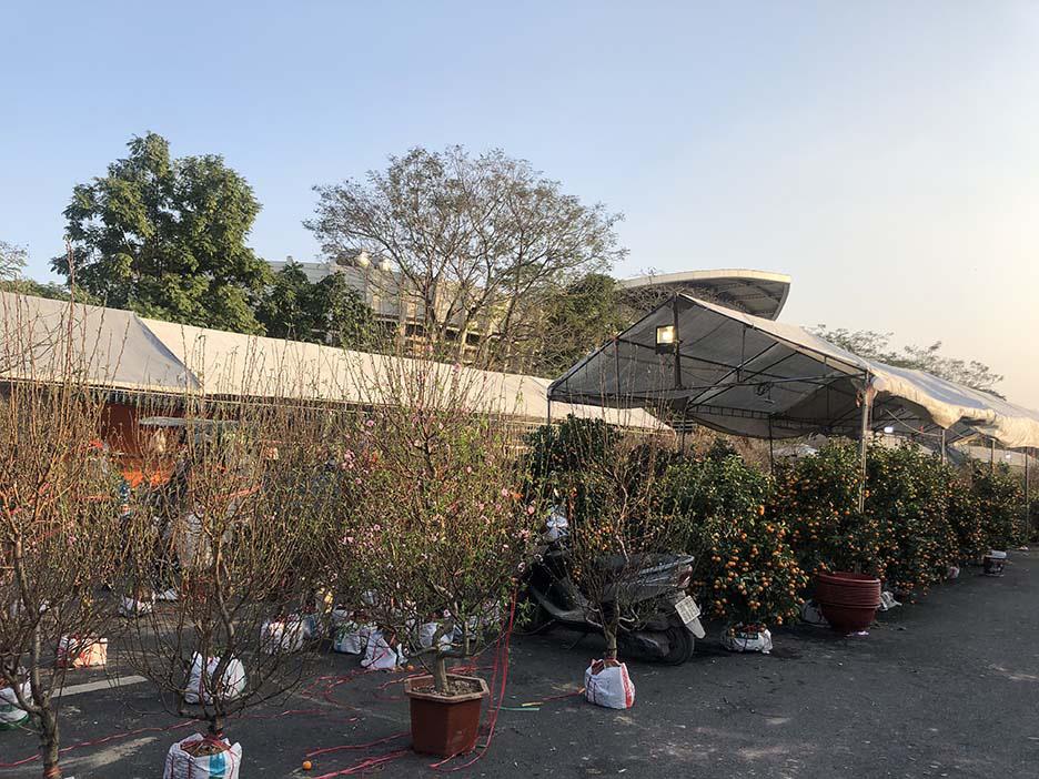 """Tụ điểm dịch vụ vui chơi, công viên đóng cửa: Người dân Quảng Ninh đón Tết """"độc - lạ"""" chưa từng có - Ảnh 2."""