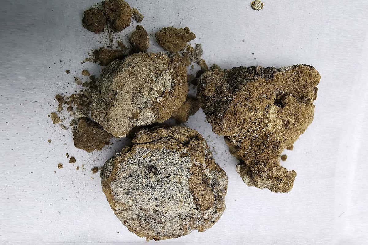 Phát hiện kem dưỡng da 2.700 năm dùng cho nam giới trong mộ quý tộc cổ đại - Ảnh 3.