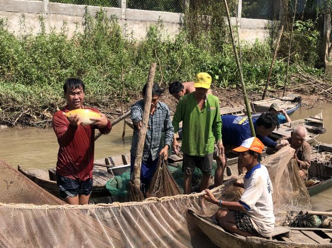 Đồng Tháp: Đi thuyền ra nhánh sông Hậu xem nông dân dỡ chà bắt cá, cá đồng, tôm sông búng nhảy tanh tách - Ảnh 7.