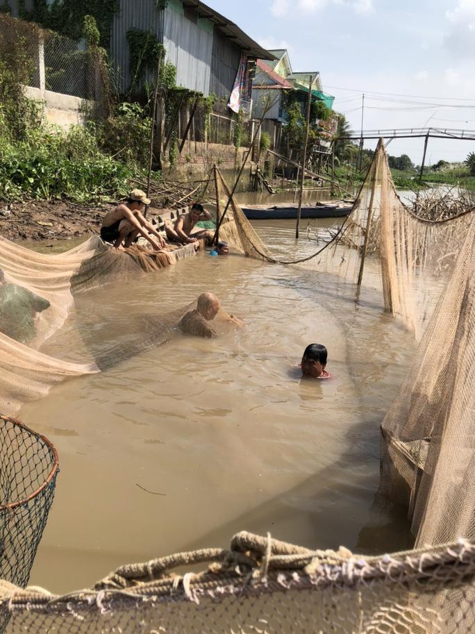 Đồng Tháp: Đi thuyền ra nhánh sông Hậu xem nông dân dỡ chà bắt cá, cá đồng, tôm sông búng nhảy tanh tách - Ảnh 3.
