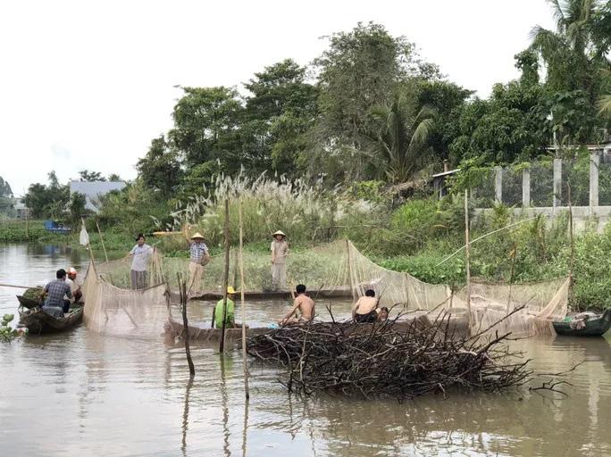 Đồng Tháp: Đi thuyền ra nhánh sông Hậu xem nông dân dỡ chà bắt cá, cá đồng, tôm sông búng nhảy tanh tách - Ảnh 2.
