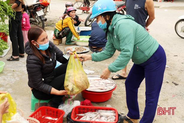Hà Tĩnh: Ngư dân trúng đậm loại cá nhão như cháo, được dân nhậu lùng mua, mỗi tàu lãi 5-7 triệu - Ảnh 10.