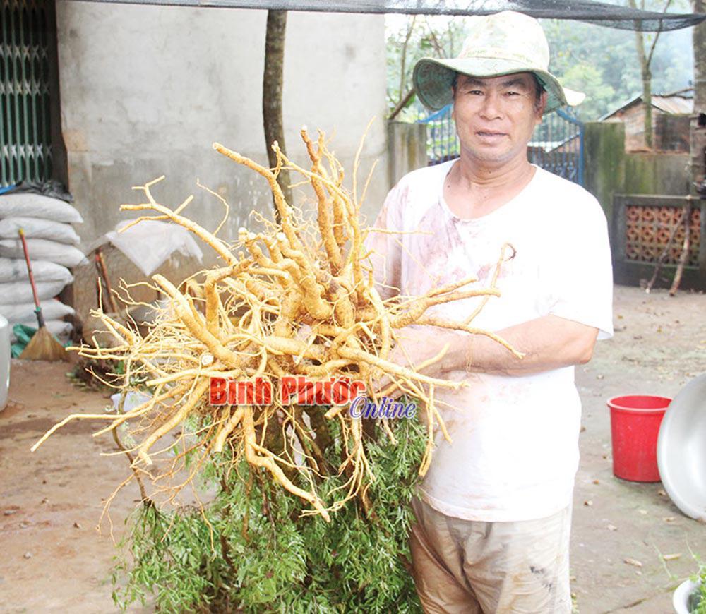 """Một ông nông dân tỉnh Bình Phước có """"kho báu"""" cả trăm tỷ nhờ đào hố chôn thứ này xuống đất cách đây 15 năm - Ảnh 4."""