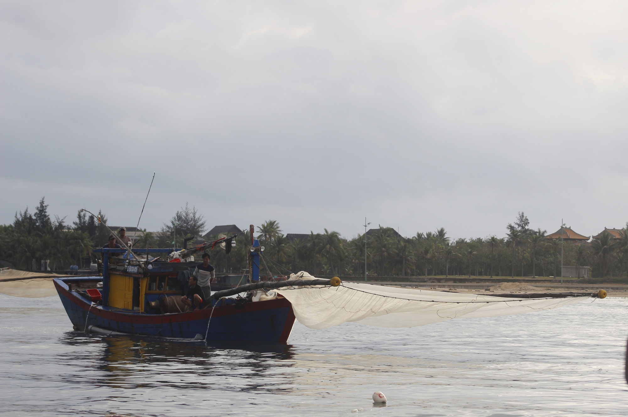 """Ngư dân Quảng Bình săn """"lộc biển"""" đầu năm cập bến đầy khoang cá, ruốc biển - Ảnh 1."""
