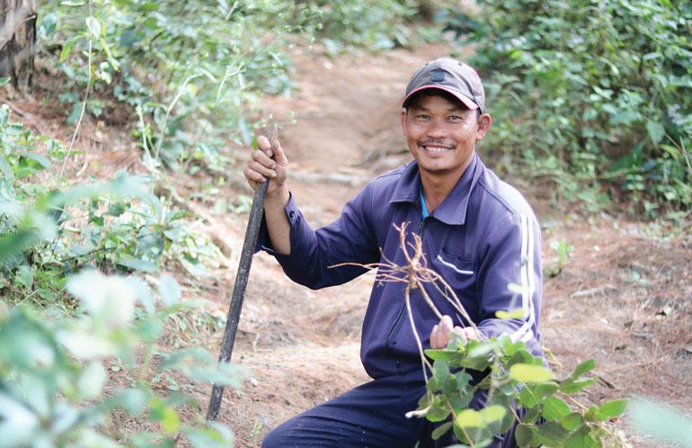 Lâm Đồng: Vô rừng đào củ Chi Kut, hái 27 thứ lá, rễ cây nhìn như cỏ dại, không ngờ là bài thuốc quý - Ảnh 4.