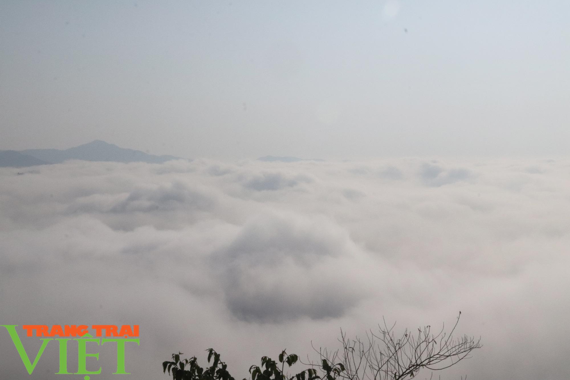 Săn mây trên đỉnh Tênh Phông những ngày đầu xuân - Ảnh 5.
