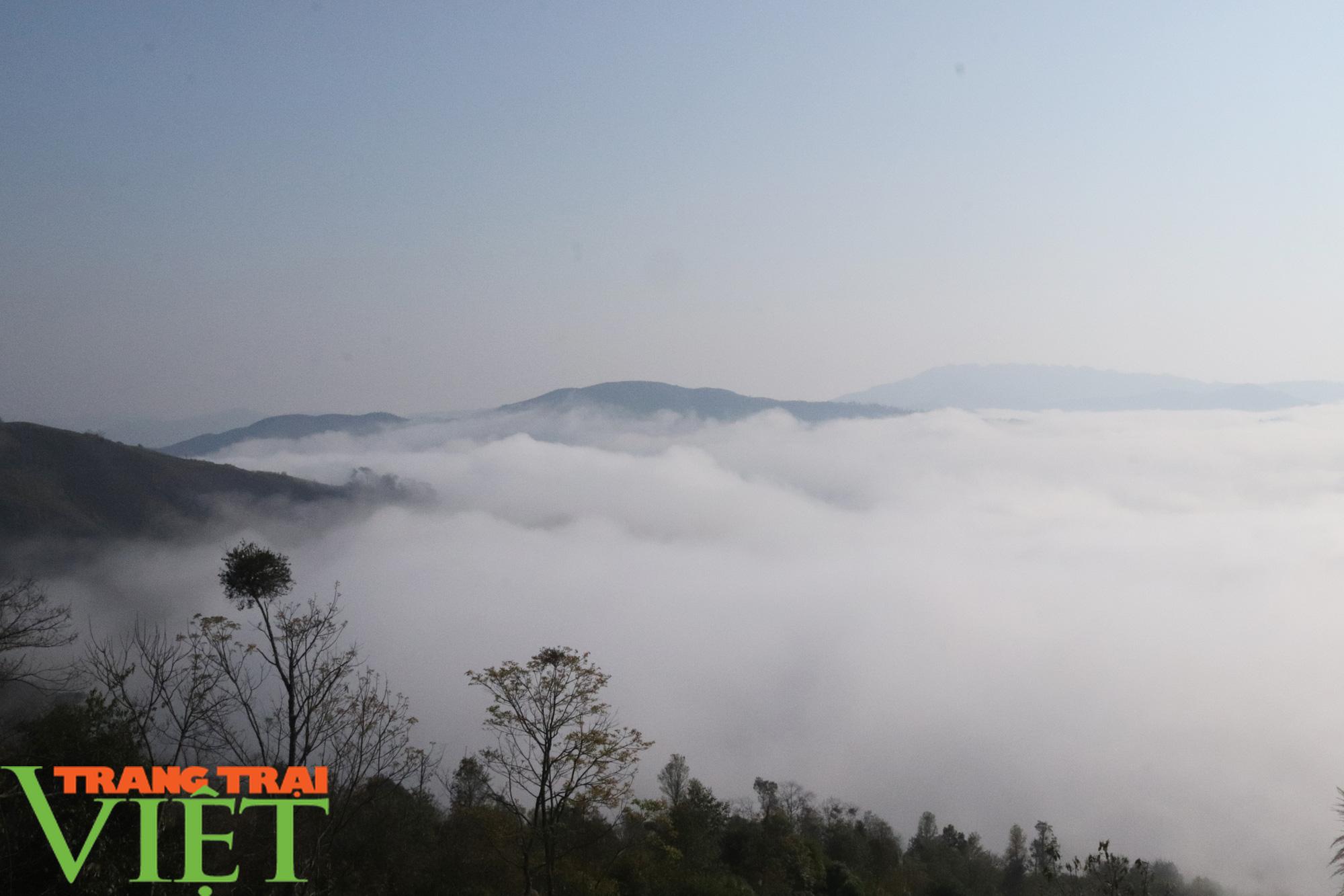Săn mây trên đỉnh Tênh Phông những ngày đầu xuân - Ảnh 6.