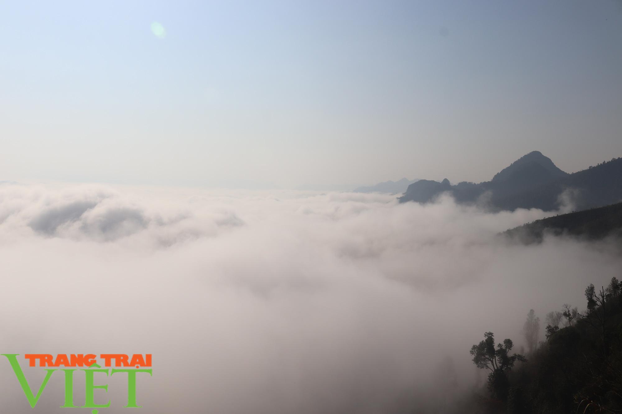 Săn mây trên đỉnh Tênh Phông những ngày đầu xuân - Ảnh 3.