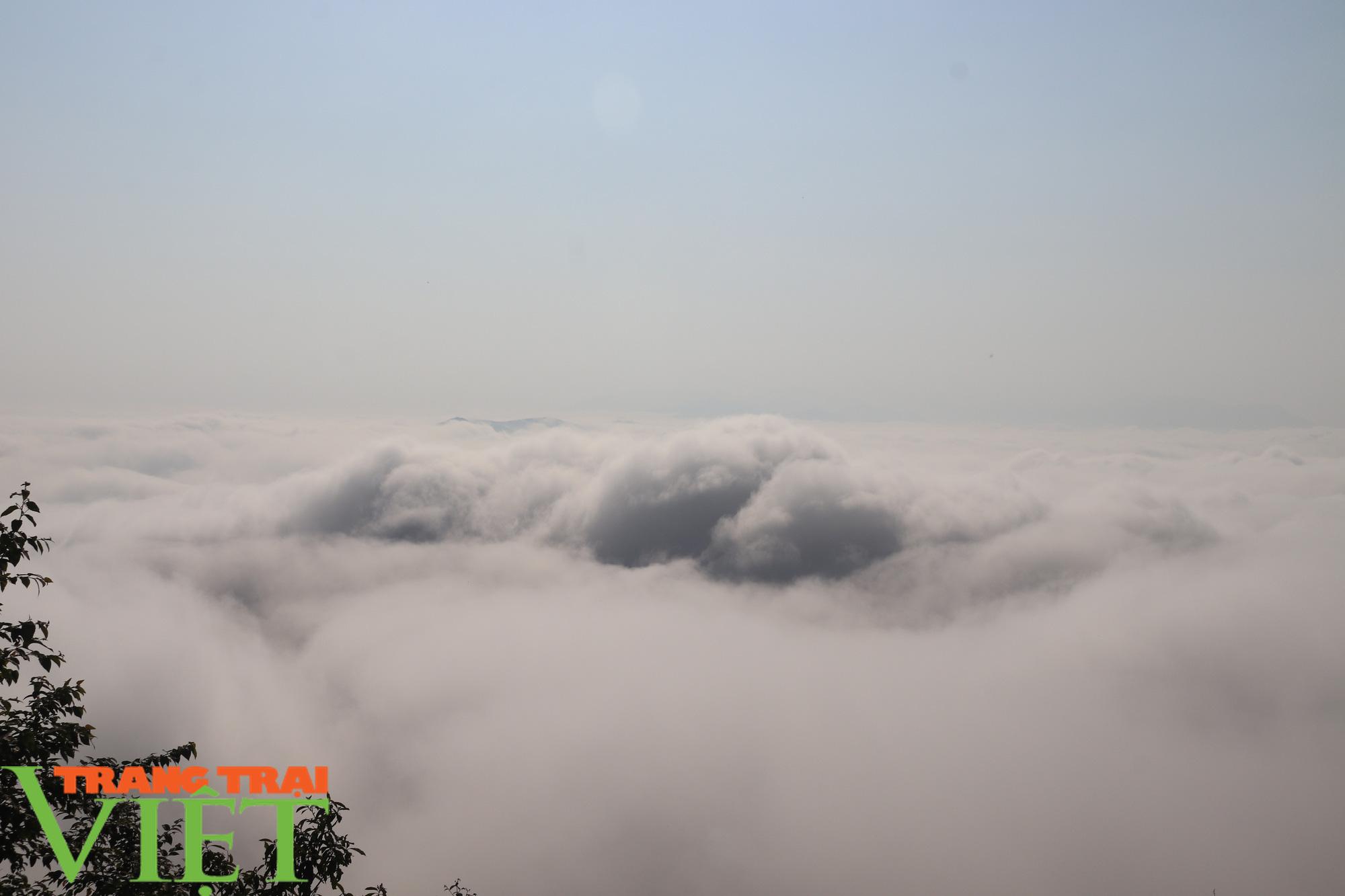 Săn mây trên đỉnh Tênh Phông những ngày đầu xuân - Ảnh 8.