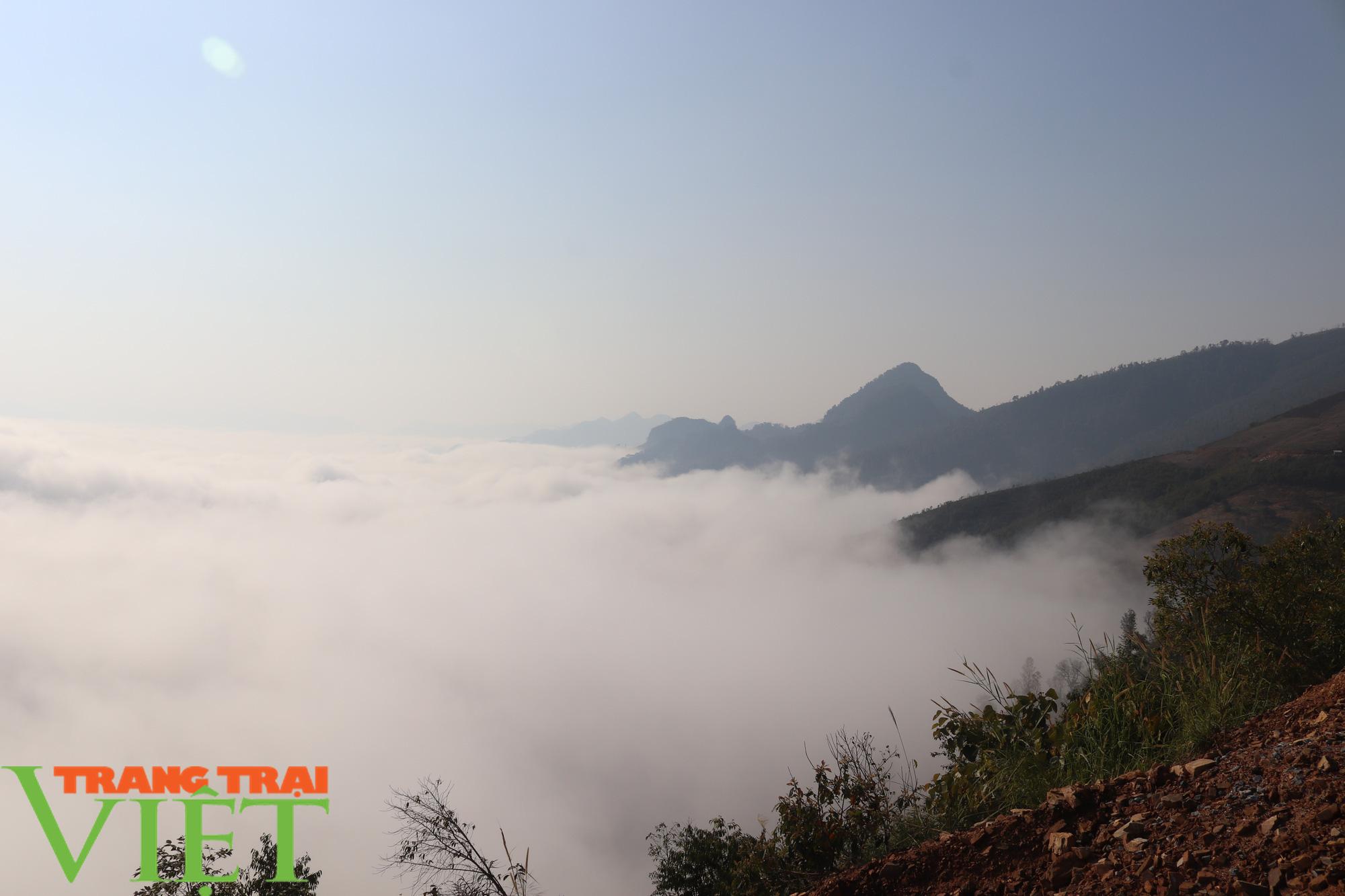 Săn mây trên đỉnh Tênh Phông những ngày đầu xuân - Ảnh 9.
