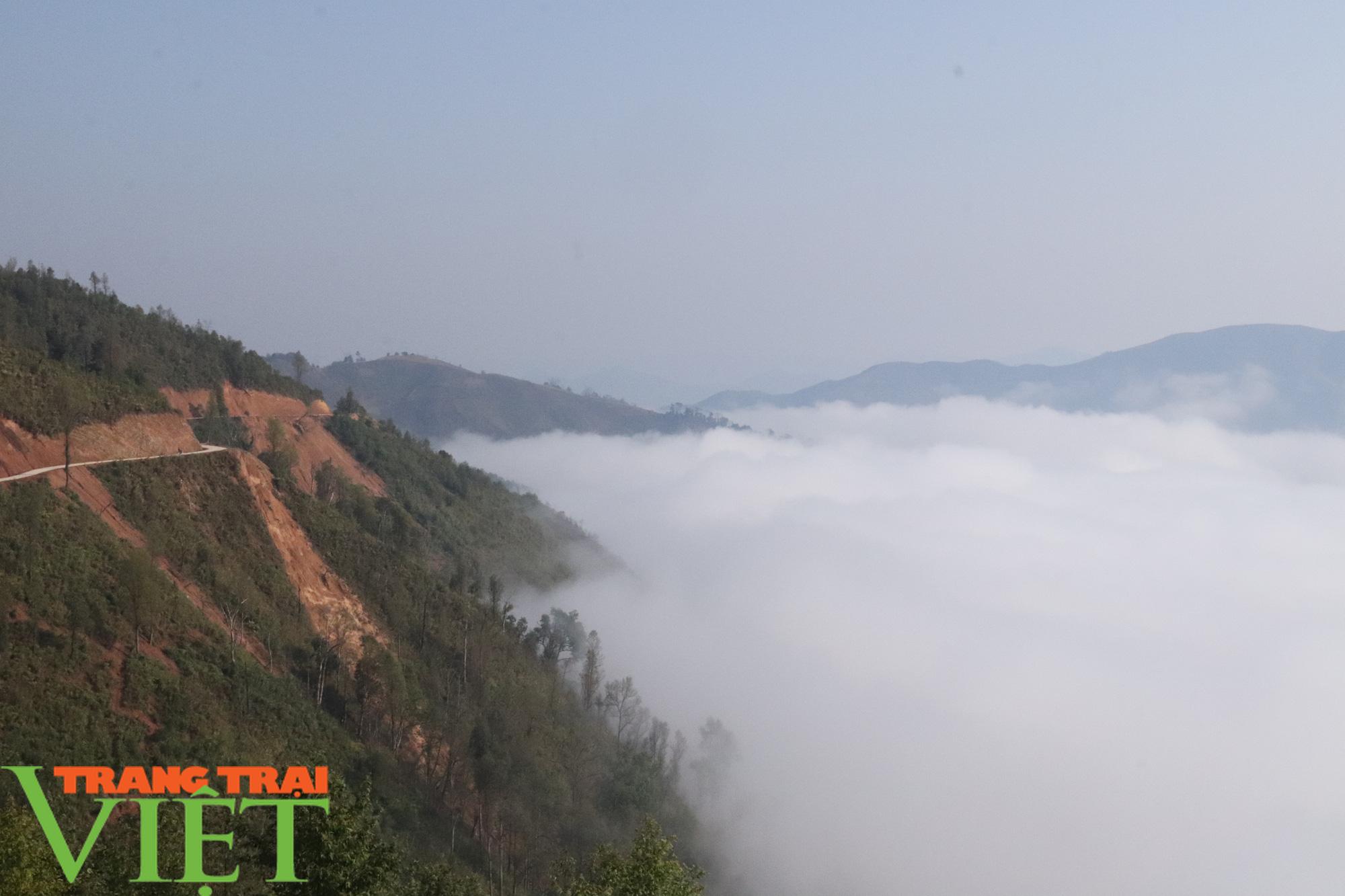 Săn mây trên đỉnh Tênh Phông những ngày đầu xuân - Ảnh 1.