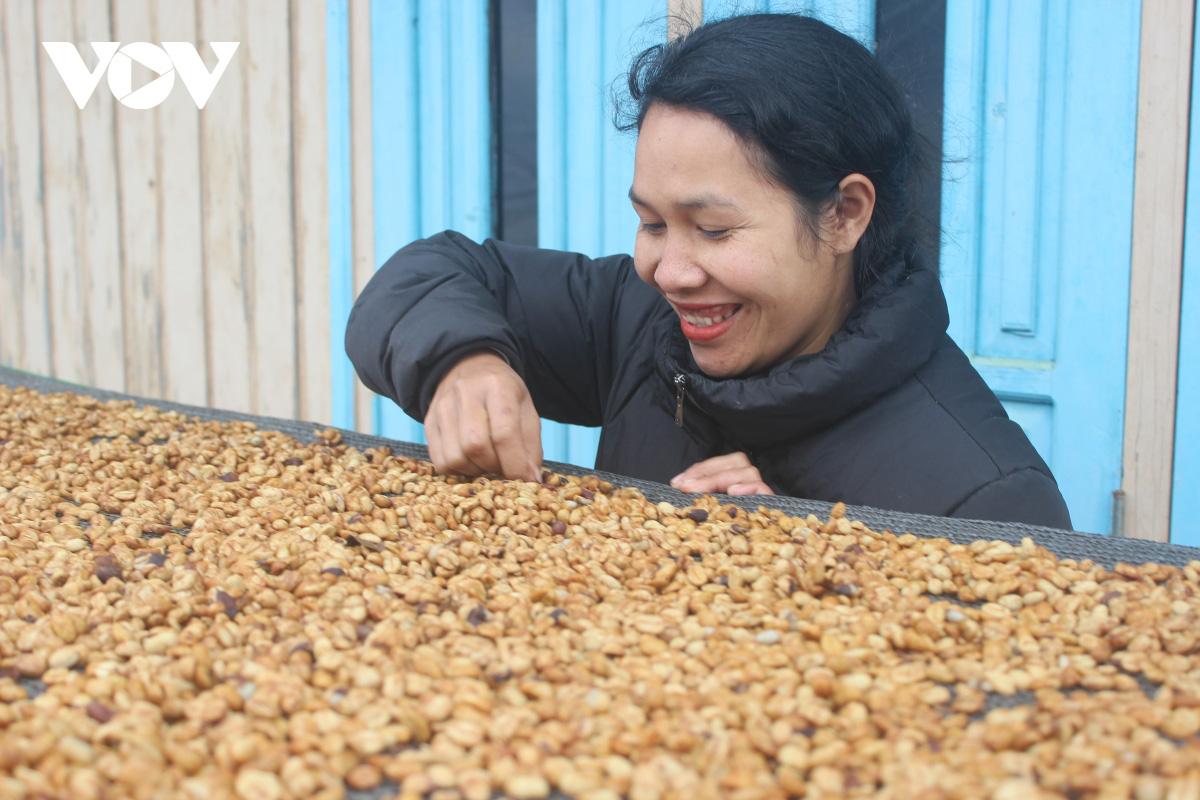 Cô gái K'ho khởi nghiệp từ cà phê Arabica vàng - Ảnh 1.