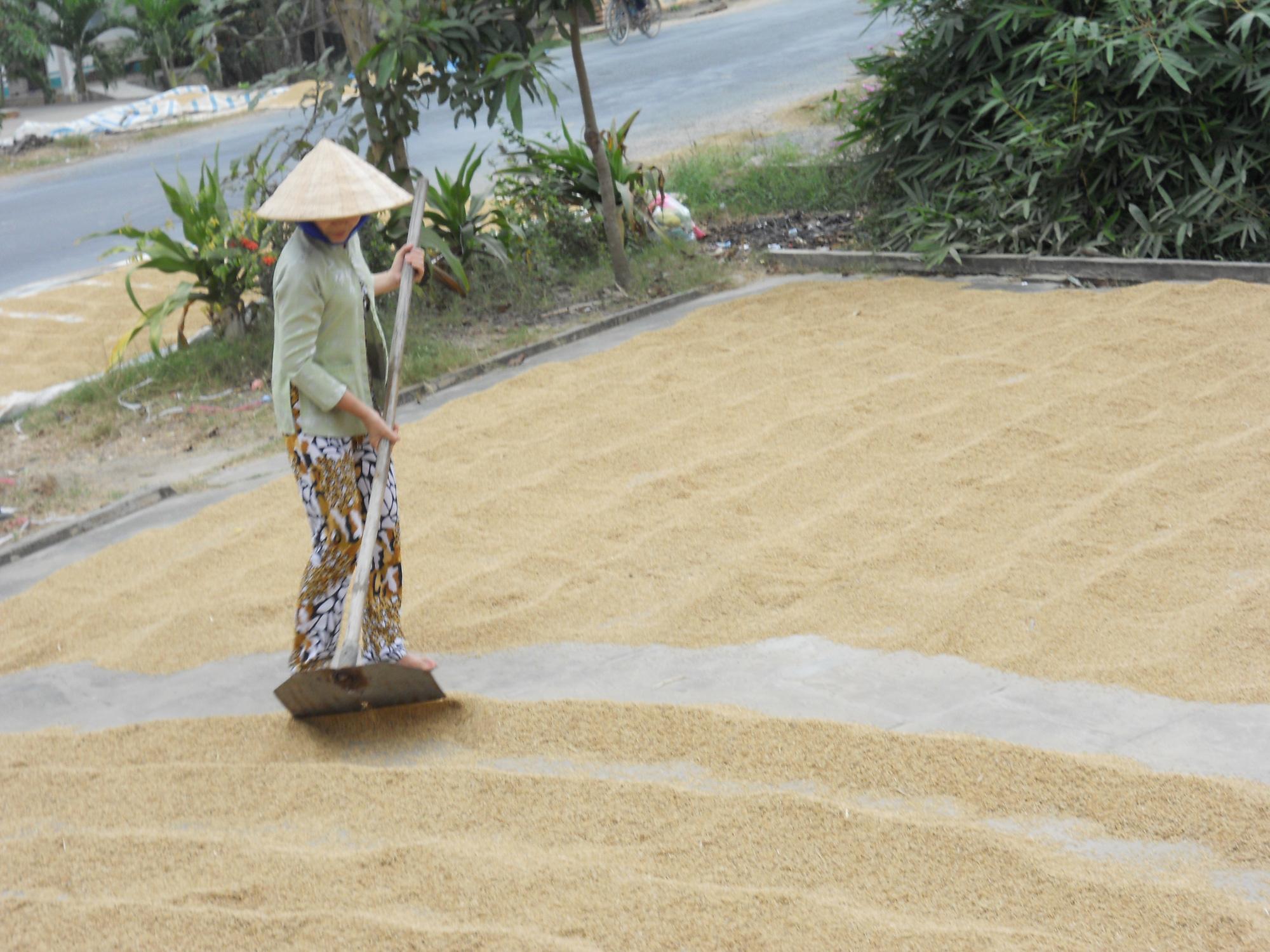 Kể chuyện làng: Nhớ mùi cơm gạo Nàng Thơm với thịt kho tàu chiều 30 Tết - Ảnh 5.
