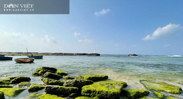 Quảng Ngãi: Mê hoặc rêu xanh nơi sóng tự tình với đá ở thiên đường du lịch  - Ảnh 9.