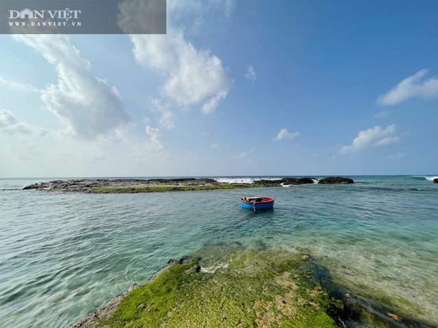 Quảng Ngãi: Mê hoặc rêu xanh nơi sóng tự tình với đá ở thiên đường du lịch  - Ảnh 8.