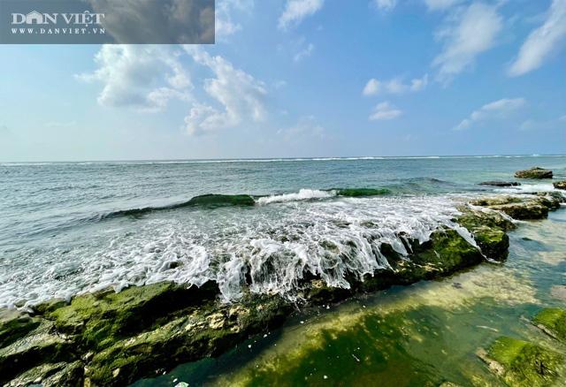 Quảng Ngãi: Mê hoặc rêu xanh nơi sóng tự tình với đá ở thiên đường du lịch  - Ảnh 6.