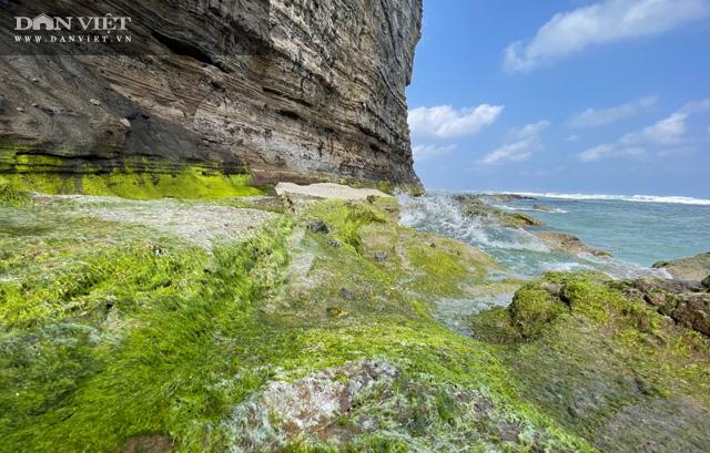 Quảng Ngãi: Mê hoặc rêu xanh nơi sóng tự tình với đá ở thiên đường du lịch  - Ảnh 5.