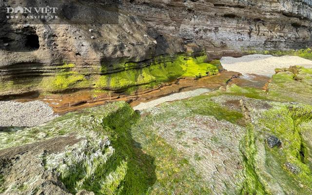 Quảng Ngãi: Mê hoặc rêu xanh nơi sóng tự tình với đá ở thiên đường du lịch  - Ảnh 10.