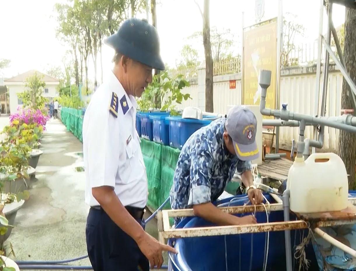 Bà Rịa - Vũng Tàu: Mô hình nuôi trồng thủy canh trong quân đội - Ảnh 3.