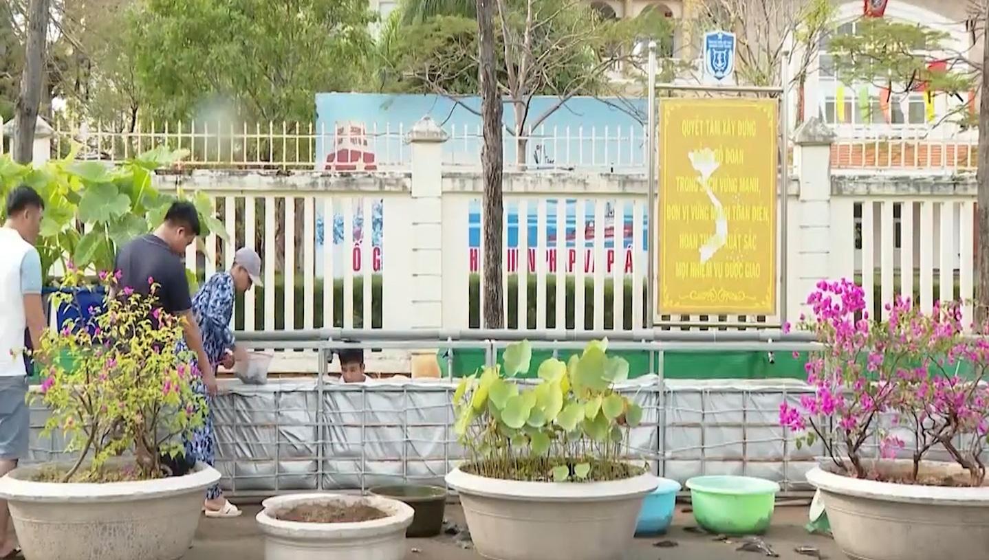 Bà Rịa - Vũng Tàu: Mô hình nuôi trồng thủy canh trong quân đội - Ảnh 5.