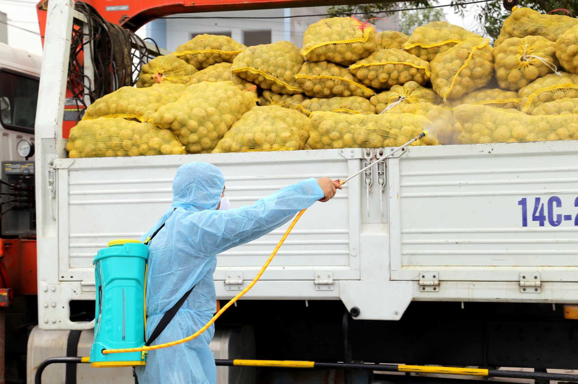 Quảng Ninh kết nối tiêu thụ thành công nông sản cho người dân bị ảnh hưởng bởi dịch Covid-19 - Ảnh 1.