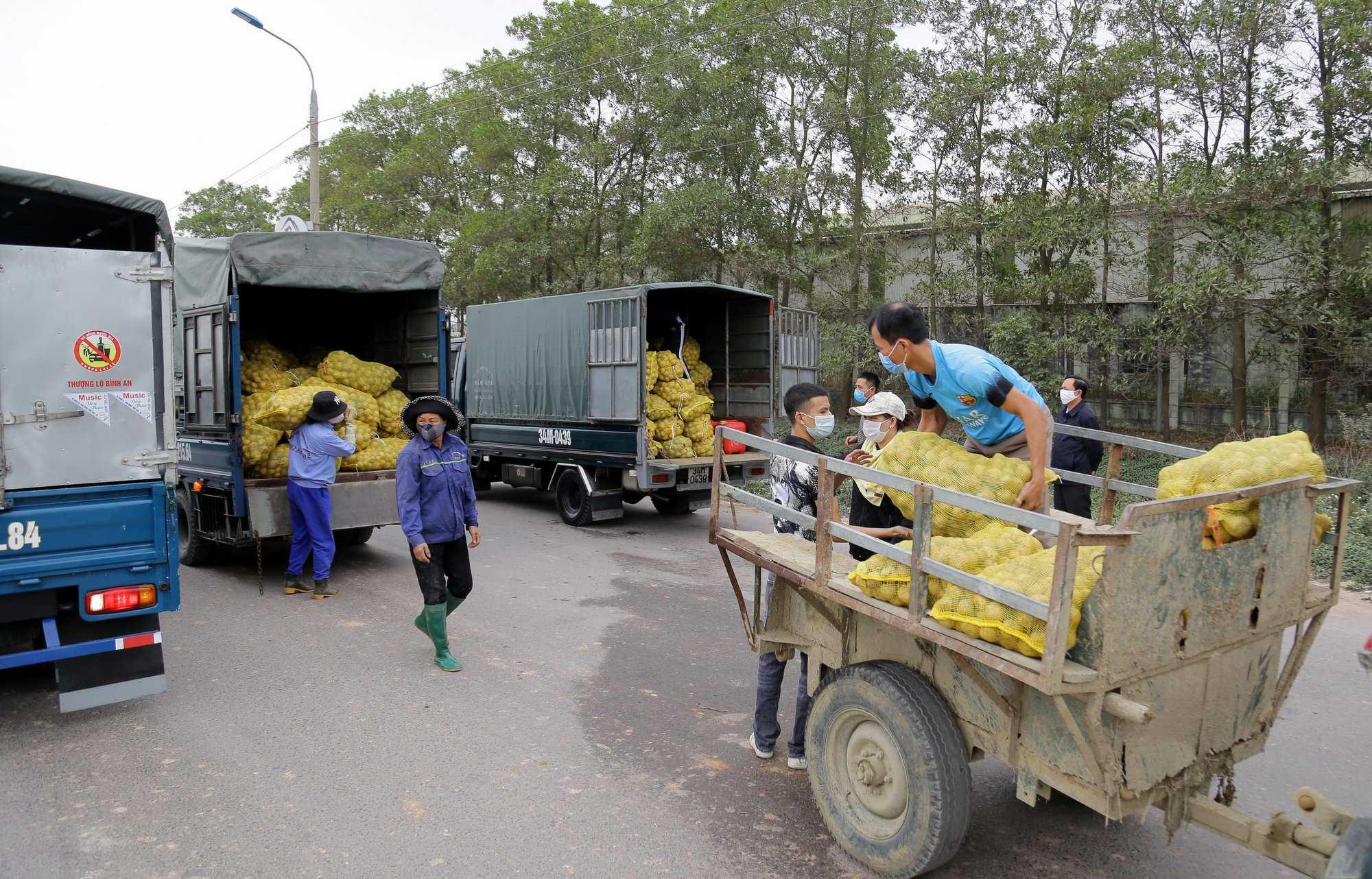 Quảng Ninh kết nối tiêu thụ thành công nông sản cho người dân bị ảnh hưởng bởi dịch Covid-19 - Ảnh 3.