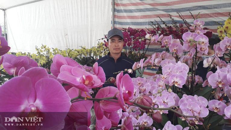 Thái Nguyên: Tết cận kề, đào, hoa, cây cảnh nườm nượp xuống phố nhưng vắng bóng người mua - Ảnh 6.