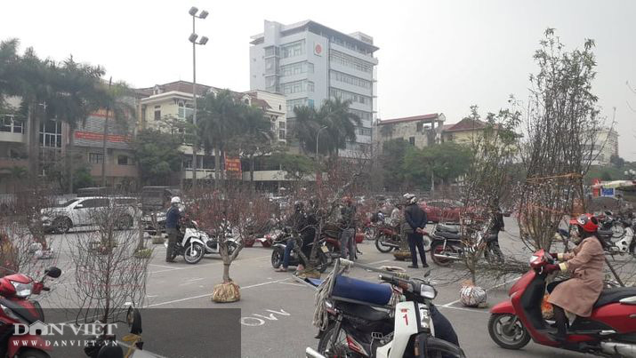 Thái Nguyên: Tết cận kề, đào, hoa, cây cảnh nườm nượp xuống phố nhưng vắng bóng người mua - Ảnh 1.