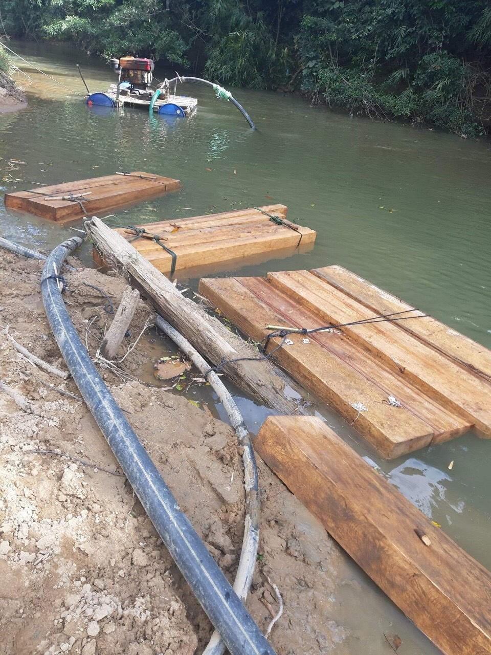 """Đắk Lắk: Thêm một vụ phá rừng quy mô lớn xảy ra ở """"điểm nóng"""" Krông Bông - Ảnh 2."""