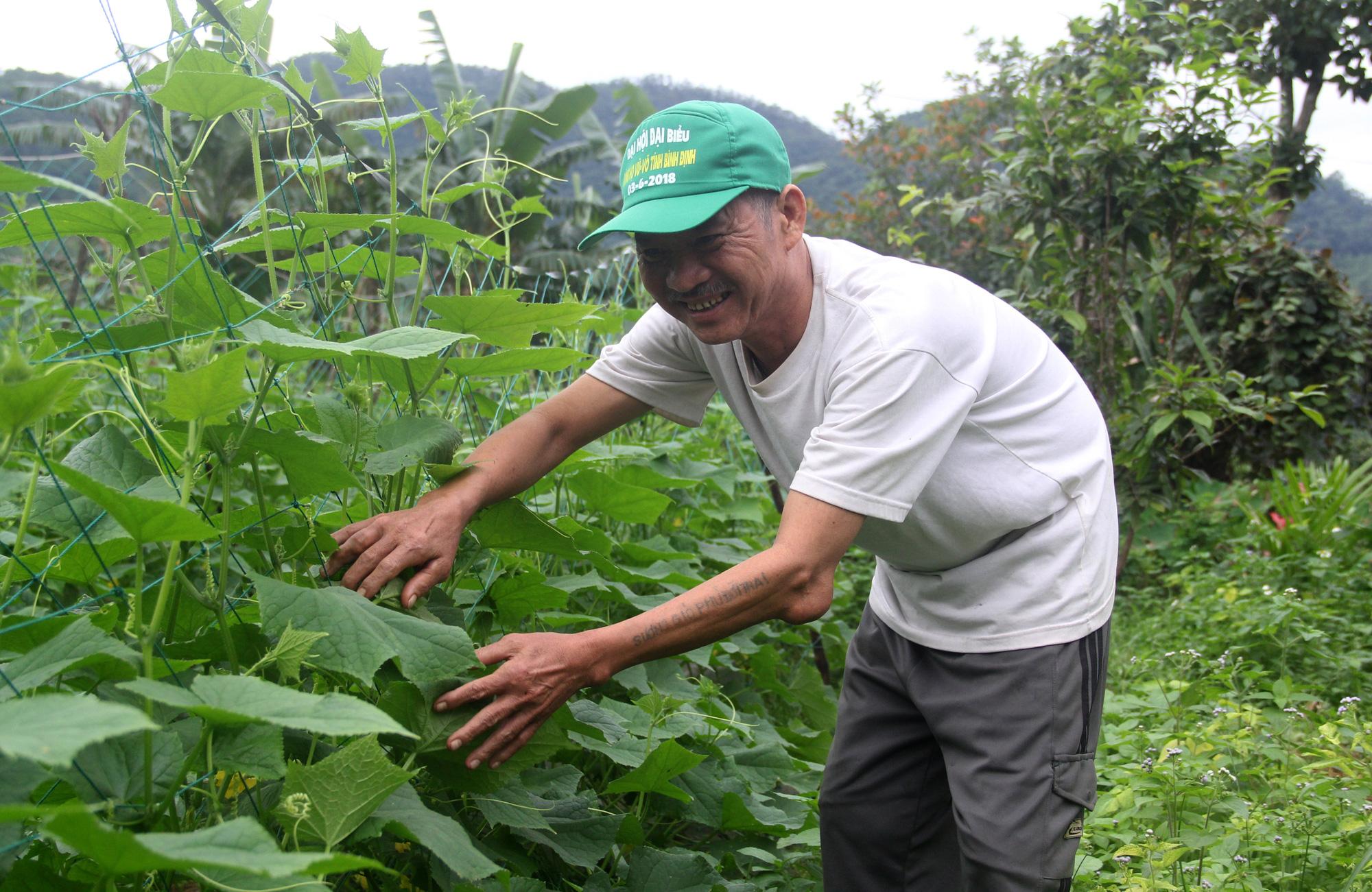 Nhiều hộ nghèo ở Bình Định tự nguyện xin thoát nghèo - Ảnh 1.