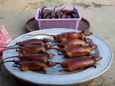 9 món ăn Việt Nam khiến khách Tây sợ hãi - Ảnh 10.