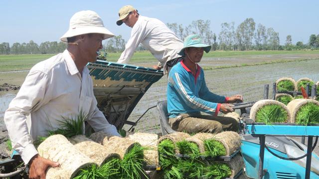 Hợp tác xã giúp nông dân vượt qua khủng hoảng  - Ảnh 1.