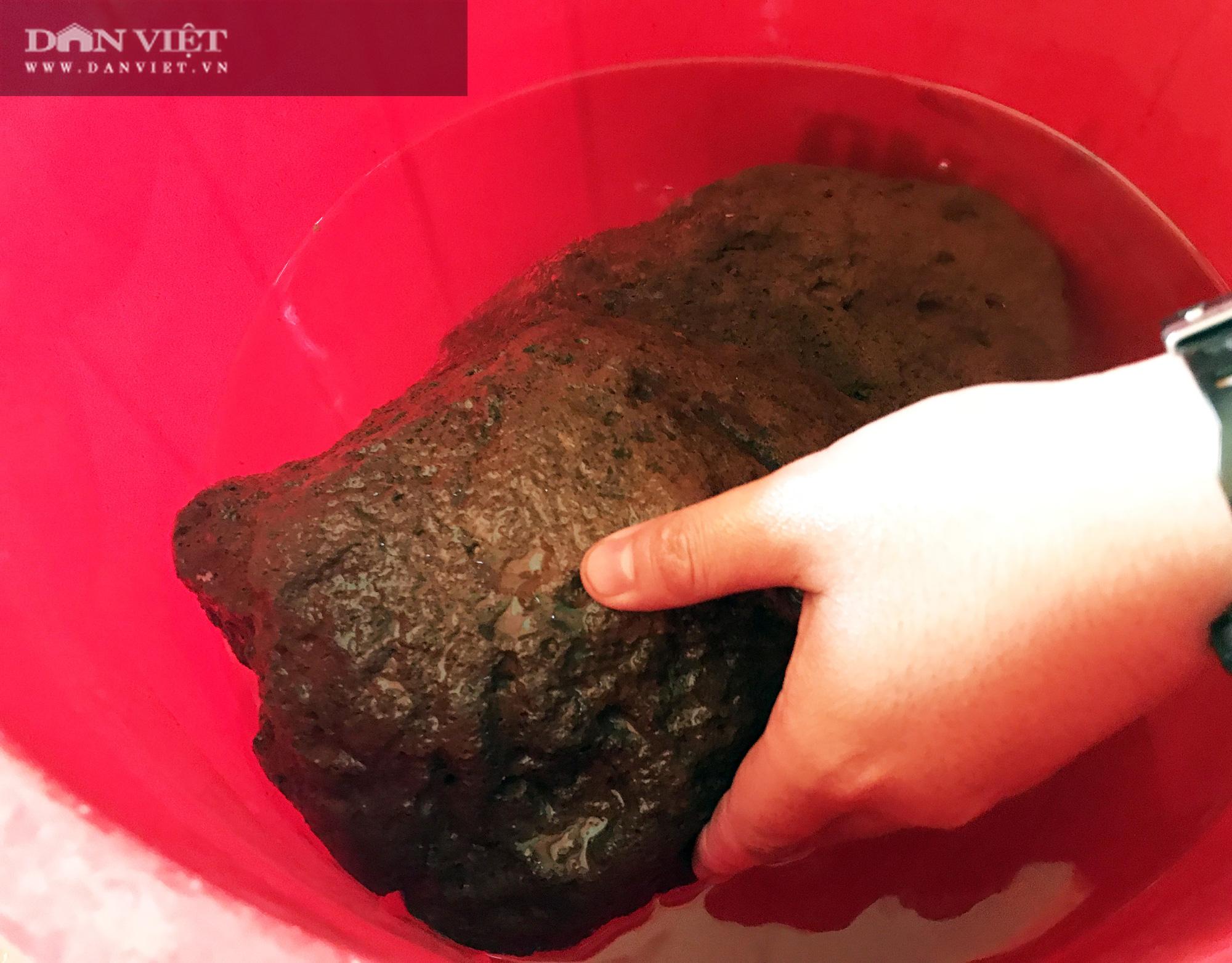 Chuyện lạ ở Sóc Trăng: Cặp đá nặng 4,2kg nổi được trên mặt nước  - Ảnh 7.