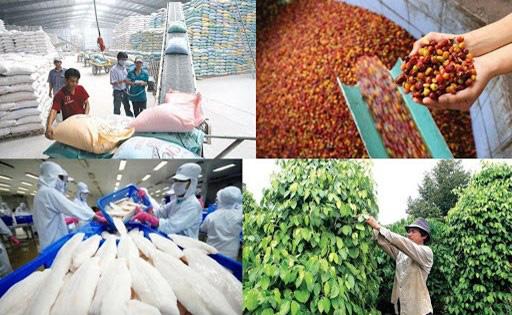 Năm 2025, mục tiêu xuất khẩu nông lâm thủy sản đạt 50-51 tỷ USD - Ảnh 1.