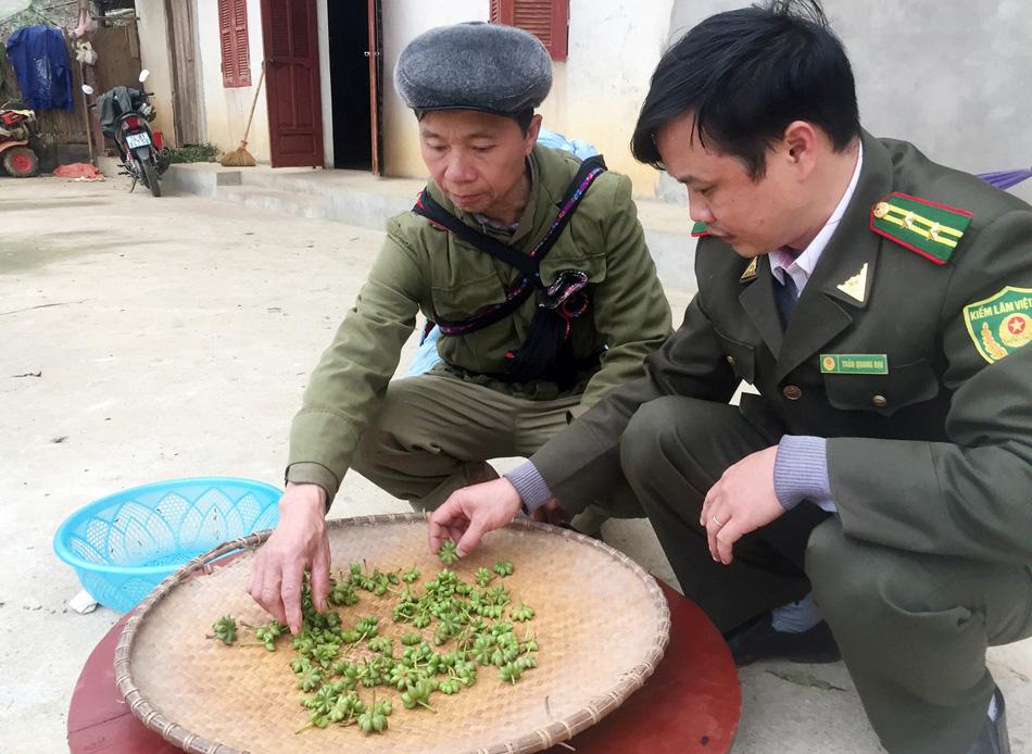 Lào Cai: Bát giác hương là hoa quý gì mà có 8 cánh, cả thị trấn chỉ có 1 nhà trồng?  - Ảnh 6.