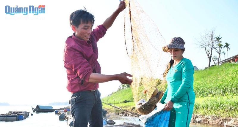 Nuôi loài cá ngon, sạch nổi danh trên sông Trà Khúc, nông dân ở đây mặt ai cũng rạng rỡ vì có thu nhập khá - Ảnh 1.