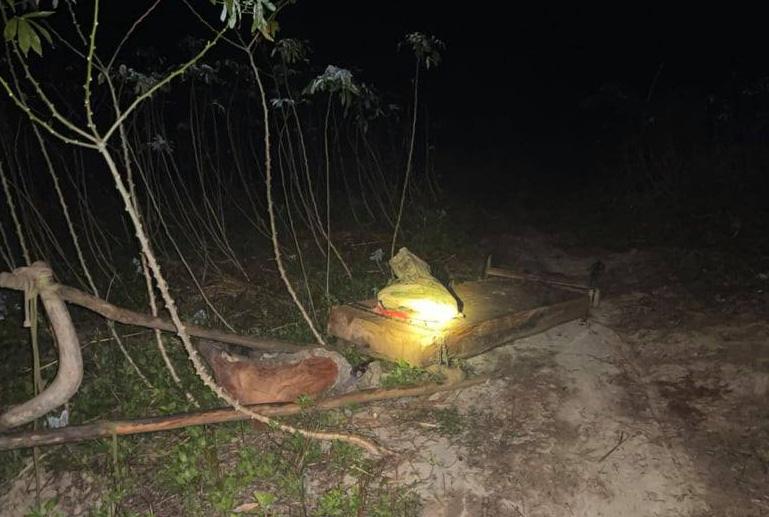 Rừng pơ-mu quý hiếm bị tàn phá: Lâm tặc đi một đường, bảo vệ rừng chốt một nẻo(?!) - Ảnh 3.