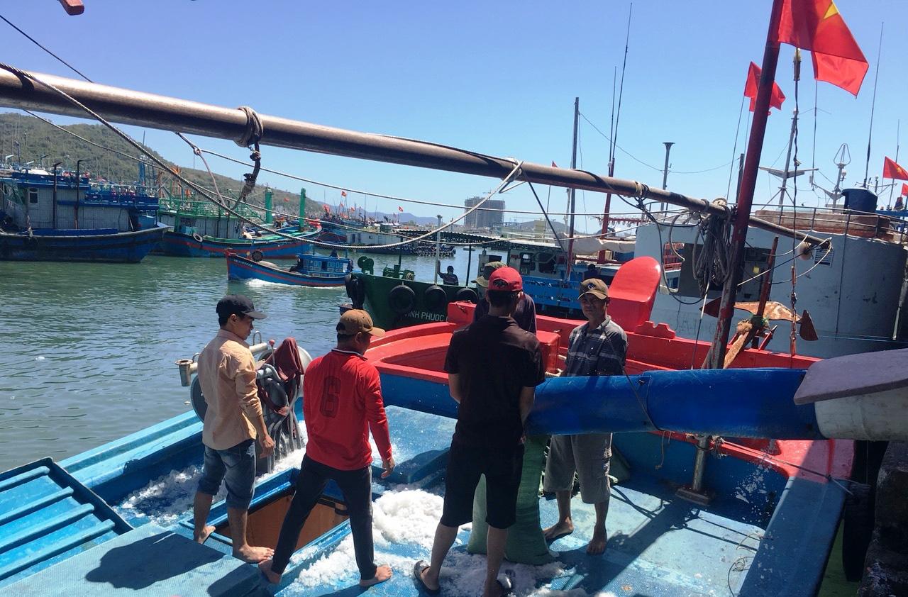 Hàng chục chuyến tàu đánh bắt xuyên Tết mang loại cá to, bự từ đảo trở về - Ảnh 4.