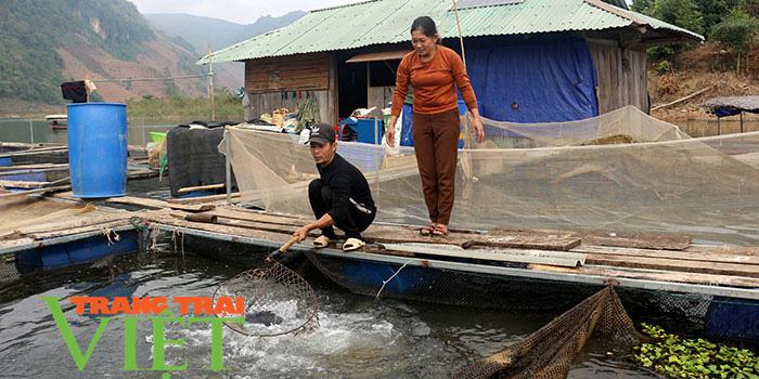 Bỏ núi xuống sông, những lão nông đổi đời từ nuôi cá lồng - Ảnh 1.