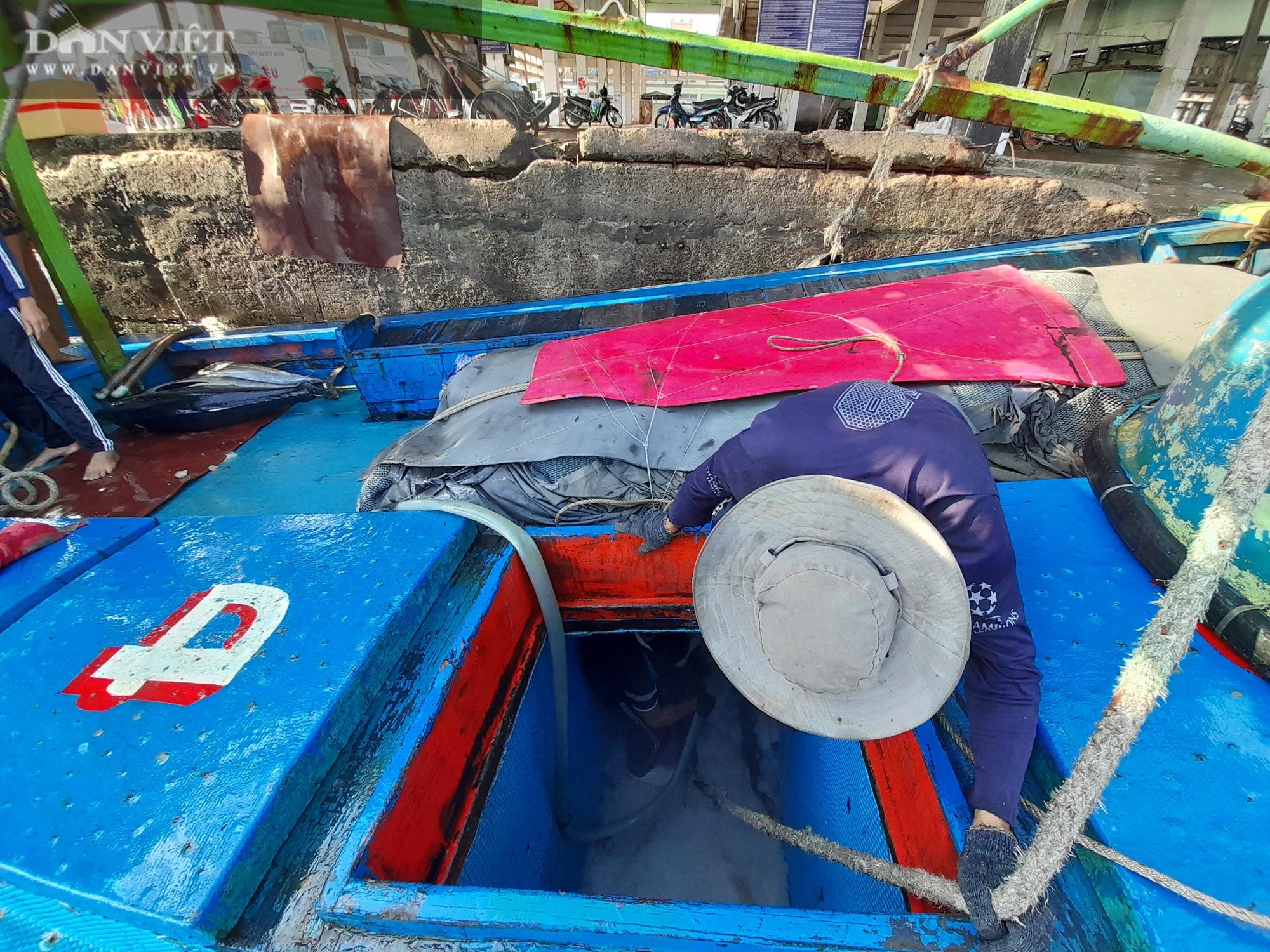 Cận cảnh đưa cá ngừ đại dương về bờ sau chuyến biển xuyên Tết - Ảnh 12.
