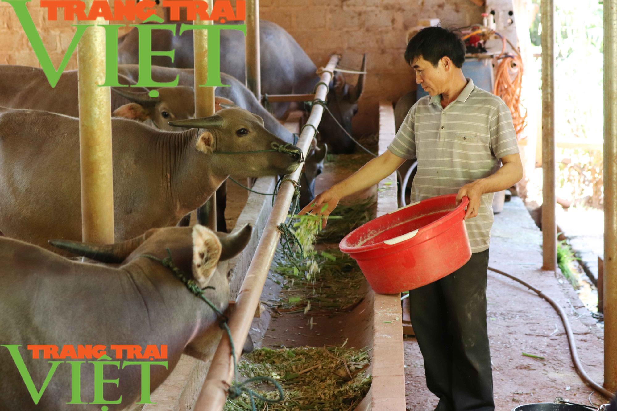 Hội Nông dân Sơn La: Làm tốt các hoạt động dịch vụ, tư vấn, dạy nghề, hỗ trợ nông dân - Ảnh 1.